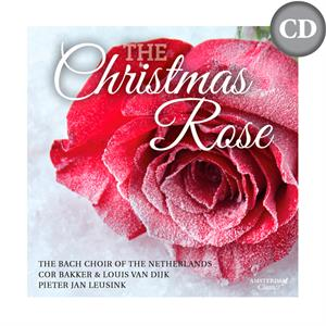 The Christmas Rose (CD)
